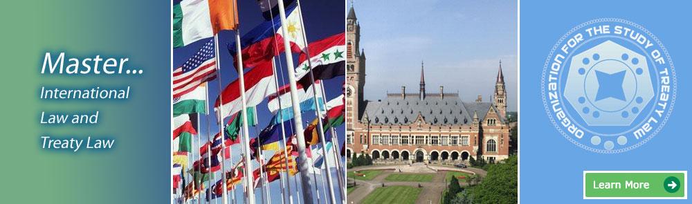 online llm in international law and treaty law